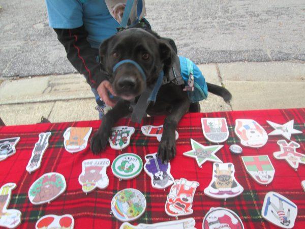 Santa Paws 5k for Wake SPCA
